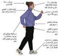 تاثیر مثبت پیاده روی برعملکرد مغز