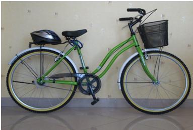 دوچرخه و خانه هاي پروژه طرح دوچرخه همگانی منطقه 8