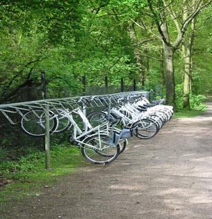 دوچرخه سواری رایگان در پارک (هلند )
