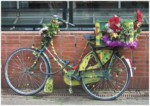 تولد یک دوچرخه
