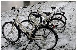 شهردار يزد با دوچرخه، وضعيت شهري را بررسي کرد